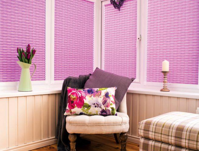 RAirwin Dino Design for childrens blinds
