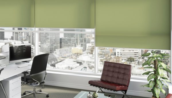 Carnival Moss coloured blinds for the workplace - Blinds Norfolk - Norwich Sunblinds