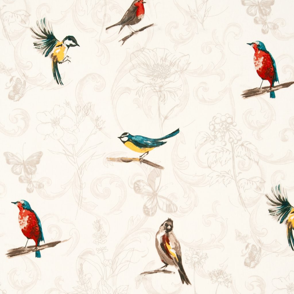 colourful garden birds on cream background